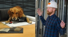 Angel the Office Dog, Nick Diggins Designer, TLCD Architecture