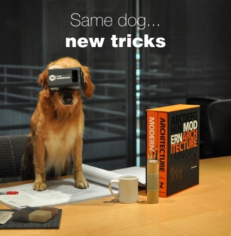 Angel the Office Dog, TLCD Architecture, Virtual Reality Rendering
