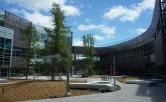 IIDA North Bay City Center, IIDA Northern California, American AgCredit, TLCD Architecture, Suzanne Nagorka
