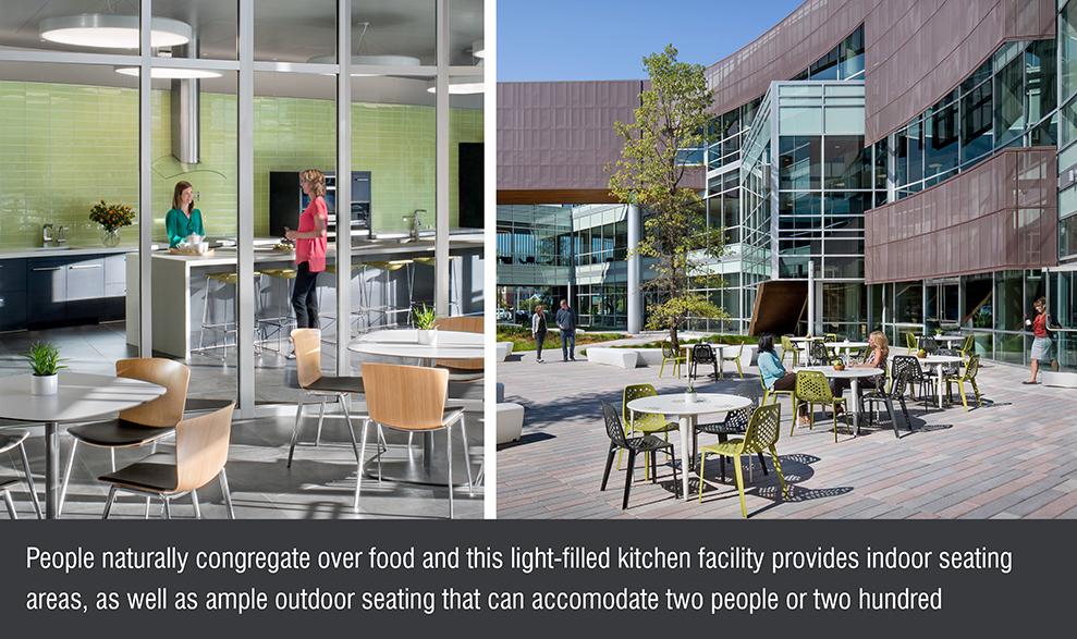 TLCD Architecture, American AgCredit Headquarters, kitchen, courtyard, gathering space, financial headquarters, community events